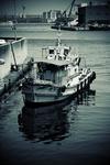 In the dock