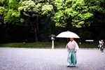 Umbrella series (number 5)