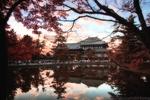 彩色の奈良