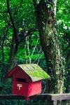 Totoro´s mail box